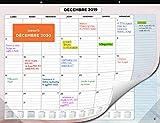 Calendrier Mural 2020 par SmartPanda - Calendrier de Bureau Mensuel - Juillet 2019 à Décembre 2020 - 33 cm x 43 cm...