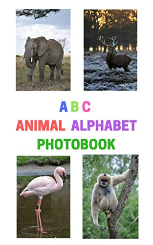 ABC ANIMAL ALPHABET PHOTOBOOK (English Edition)
