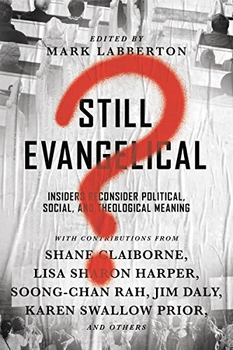 Still Evangelical?: Insiders Reconsider Political, Social, and Theological Meaning (English Edition) (Tom Lin)