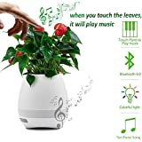 Samsung Galaxy Tab CDMA P100 compatible Flower Pot Wireless Bluetooth Speaker Music Flowerpot with Night LED light , play music when you touch the leaves , Smart Musical Player , Smart Musical Pot Compatible with all Android Phones Samsung , VIVO , Redmi , Xiaomi , MOTO , NOKIA all other smart phones