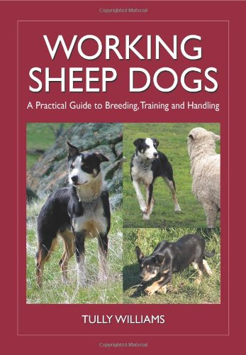 Working Sheep Dogs: A Practical Guide to Breeding, Training and Handling (Landlinks Press)