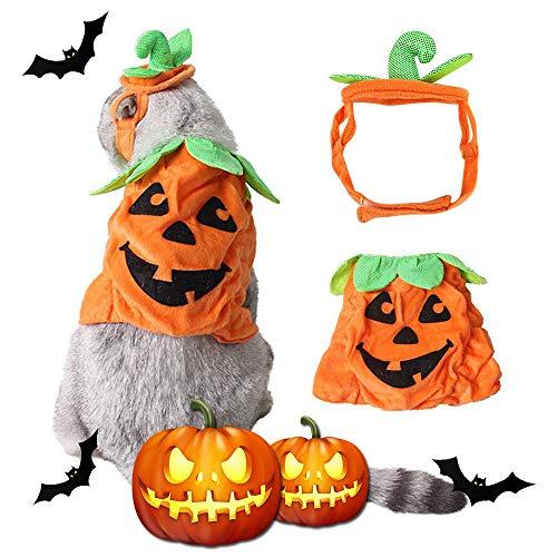 Kostüm Klebeband Lustig - Kürbis Halloween Kostüm Katzen, kreatives Hundehalloween-Kostüm mit Kürbis-Kopfbedeckungsentwurf, lustiges Haustier-Cosplaykleid für Katzen, Kätzchen, Miezekatze, kleine mittlere Hunde und Welpen