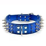 Dogs Kingdom 55,9–66cm blau groß Leder mit Spike-Nieten Hundehalsband 3Größe Pet Halsband Blau