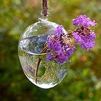 Figura dell'uovo di Hanging vaso di vetro idroponica le piante del contenitore - Hanging Flower Vase