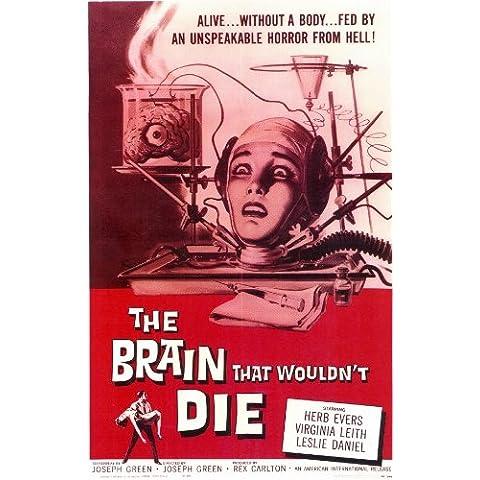 Il cervello che non sarebbe Die Poster film In 11 17 x 28 cm x 44 cm, motivo erbe aromatiche Evers Virginia Leith Adele Lamont Leslie Daniel Bruce Brighton Paula