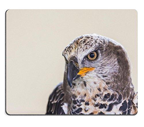 MSD-Tappetino per mouse in gomma naturale, gioco immagine ID 34731073 Eagle lo ha incoronato Coronatus Stepphanoaetus, motivo: primo piano di testa e ali
