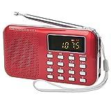 PRUNUS Mini radio AM/FM ad altoparlante singolo. Lettore musicale MP4, Supporto micro sd / USB, con funzione torcia di emergenza ricaricabile. immagine