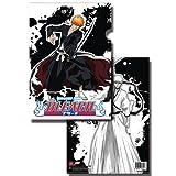 Bleach Ichigo & Hollow Ichigo File Folder