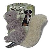 Country Pets CP283030 Welpenspielzeug Eichhörnchen