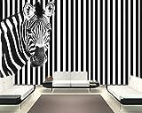 selbstklebende Fototapete - Zebra vor einem gestreiften Hintergrund - schwarz weiss - 310x200 cm - Tapete mit Kleber – Wandtapete – Poster – Dekoration – Wandbild – Wandposter – Wand – Fotofolie – Bild – Wandbilder - Wanddeko