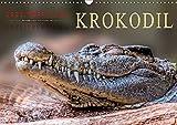 Urzeitreptilien - Krokodil (Wandkalender 2019 DIN A3 quer): Beeindruckende Tiere mit unbändiger Kraft. (Monatskalender, 14 Seiten ) (CALVENDO Tiere)