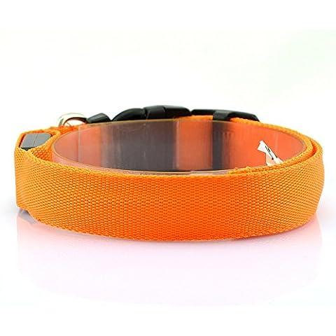 LED collare cane guinzaglio cane cavi di cane lampeggiante di sicurezza regolabile Notte Confezione da