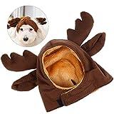 Petacc Adorabile costume per Halloween per animali domestici, costume per cani, abbigliamento con mantello da campione di boxe, adatto per piccoli cani, blu (Bellissimo cappello)