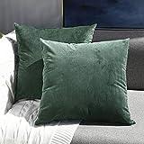 Sunfay Kissenbezug Samt Set Kissenhülle 45 x 45 cm 2er Sofakissen mit Reißverschluss dekokissen Set für Sofa Bett Schlafzimmer Solide Streifen Dunkelgrün