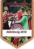 FC Bayern Kalender 2019 - Bannerkalender A4, Fussball Kalender, Fankalender, FCB Kalender 2019, FC Bayern München Kalender 2019 - 21 x 29,7 cm