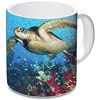 Katerina Prestige–Jarra de tortuga de mar, ME1007