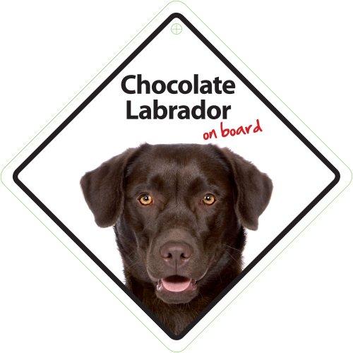 Vorsicht, Schokolade (Schokolade Labrador On Board)