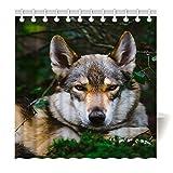 Violetpos Duschvorhang aus Stoff wasserdichter Vorhang mit verstärktem Saum Wolf Tier schau Dich an 150 x 180 cm