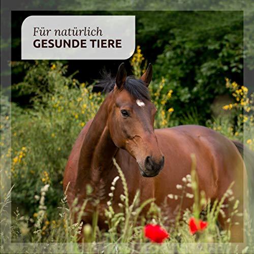 "AniForte® *Bio-Bachblüten ""Angsthase"" für Hunde 20g Globuli - 5"