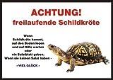 INDIGOS UG Türschild FunSchild - Schildkröte - für Käfig, Zwinger, Haustier, Tür, Tier, Aquarium - Din A5 PVC 3mm Stabil