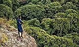 LOST: Menschen an den Rändern der Welt (Äthiopien, Brasilien, Indonesien, Malaysia, Myanmar, Namibia, Russland, Südsudan) - Markus Mauthe