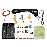 LaDicha 10ST FM Transmitter Kit RF-02 Funkmikrofon Parts MP3 Repeater Micro Transmitter mit Antennen Batteriehalter
