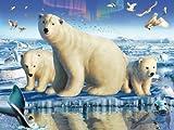 Clementoni 5390274 - Arctic Splendor  1000 Teile
