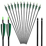"""Best Carbon Express Archery Bows - Huntingdoor 31 Inch Archery Carbon Arrows 4"""" Fletched Review"""