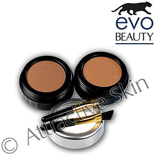 Attractive Skin evoeye Poudre sourcils Light Brown & Medium Brown 2 x 3 g