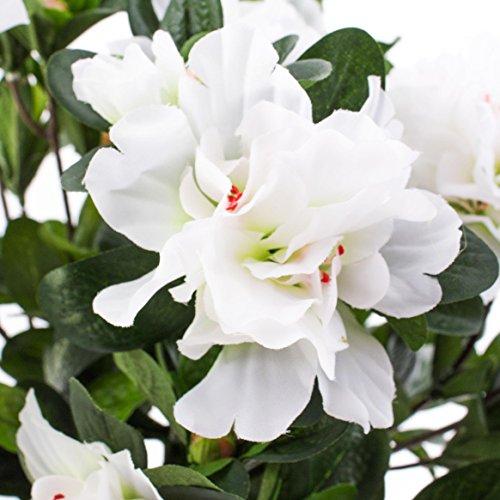 artplants Set 3 x Künstliche Azalee mit 75 Blüten, 400 Blättern, auf Steckstab, weiß, 35 cm, Ø 30 cm – Kunstblume/Textilblumen