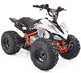 Quad 125cc Kinder Predator 8Zoll Kayo–mit Montage, Überprüfung und Test in der Werkstatt
