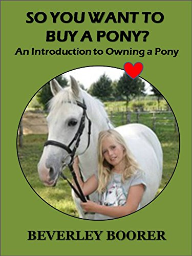 so-you-want-to-buy-a-pony-an-introduction-to-owning-a-pony