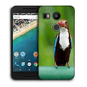 Snoogg Kingfisher Bird Printed Protective Phone Back Case Cover For LG Google Nexus 5X