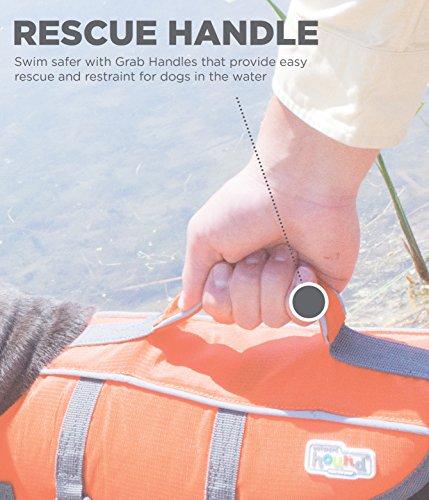 Kyjen 22019 Outward Hound Ripstop Quick Release Easy Fit Rettungsweste für Hunde, verstellbar, Größe S, orange - 2