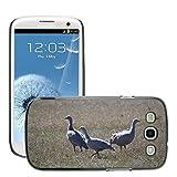 Grand Phone Cases Bild Hart Handy Schwarz Schutz Case Cover Schale Etui // M00141005 Cape Barren Gänse Gänse Tier // Samsung Galaxy S3 S III SIII i9300
