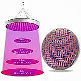 420Grow UFO LED Innenkulturlampe | Keimwachstum und blühende Marihuanapflanze | Hydroponische Growboard | Hohe 450W, geringer Stromverbrauch IP55