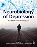 Neurobiology of Depression: Road to Novel Therapeutics