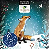 Box of 20 Charity Christmas Cards (ALM2947) Starlit Fox / Hedgehog - Sold in Aid of the Woodland Trust