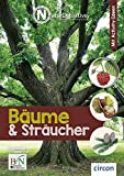 Nataurdetektive Bäume und Sträucher (Naturdetektive)