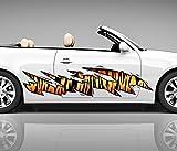 2x Seitendekor Tiger Streifen Haut Metall Kratzer 3D Autoaufkleber Digitaldruck Seite Auto Tuning bunt Aufkleber Rennstreifen Seitenstreifen Airbrush Racing Autofolie Car Wrapping Decals Sticker Tribal Seitentribal CW056, Größe LxB:ca. 80x20cm