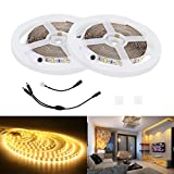 Lahoku home decor light SMD5730 2 Reels 32.8ft DC 24V Daylight White Effect Lighting strip for Indoor Party Christmas Holiday Festival Celebration (S)