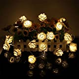 GEREE String Lights, 20 LED batteriebetriebene Rose Flower String Fairy Lights für Valentinstag, Hochzeit, Party, Indoor Dekoration, Warm White Test