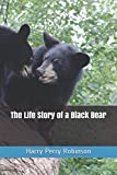 The Life Story of a Black Bear