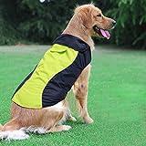 Ezer Hund Regenmantel-Hohe Sichtbarkeit Wasserdicht Hunderegenmantel, reinwear Hund Jacke für Kleine, Mittelgroße und Große Hunde, XXL, Gelb