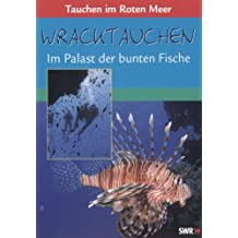 Wracktauchen - Im Palast der bunten Fische