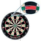 Eclipse Pro Bristle Dart Board
