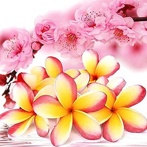 Pink Frangipani Blüten Rollen Sie auf Parfüm Duft Öl EXTRA STARK konzentrieren 2 x 12ml