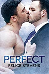 Perfect (Soulmates Book 4) (English Edition)