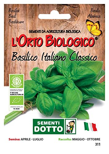 Sdd O.Bio_Basilico Italiano Classico Seme, 0.02x15.5x10.8 cm