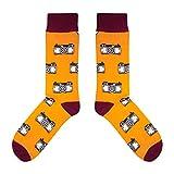 CUP OF SOX - Foto/Kamera/Hipster - Socken in der Tasse - Herren und Damen Geschenksocken Freizeit Socken (41-44)